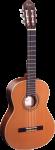 Ortega R131 Konzertgitarre Classical Guitar
